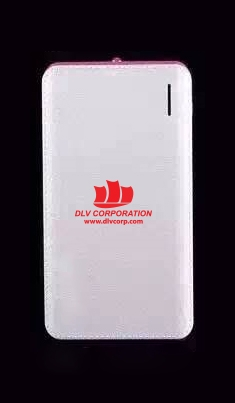 PDV-018-Pin-sac-du-phong-in-khac-logo-doanh-nghiep-7-1474260037.jpg